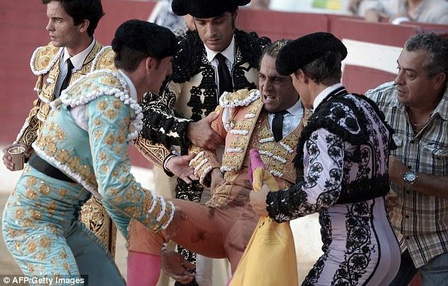 Đấu sĩ Tây Ban Nha thiệt mạng vì bị bò tót đâm thủng phổi - Ảnh 3.