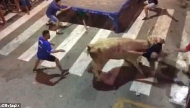 Khoảnh khắc bò tót lao qua hàng rào, húc trúng khán giả đứng xem trong lễ hội thường niên - ảnh 2