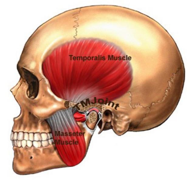 Đây là những cách để giảm sự hoành hành của chiếc răng ngu - Ảnh 3.