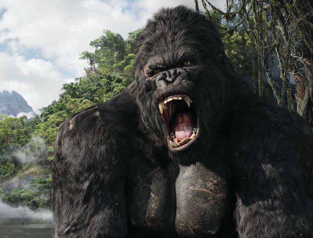 Kết quả hình ảnh cho King Kong