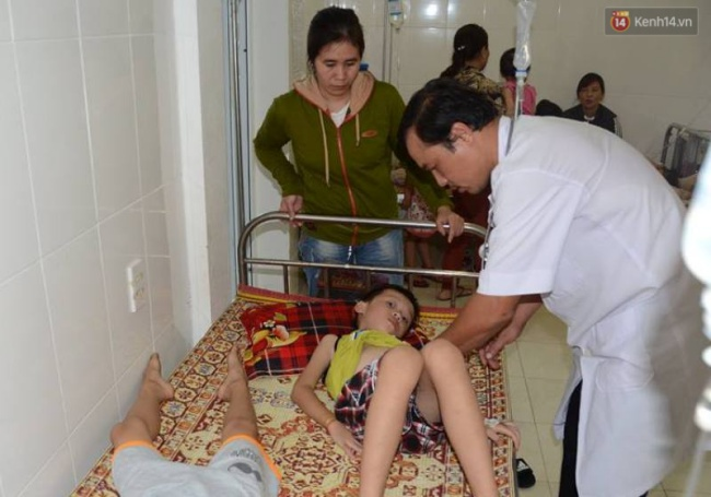 Nghệ An: Tưởng quả ngô đồng là quả óc chó, 50 học sinh bị ngộ độc - Ảnh 1.
