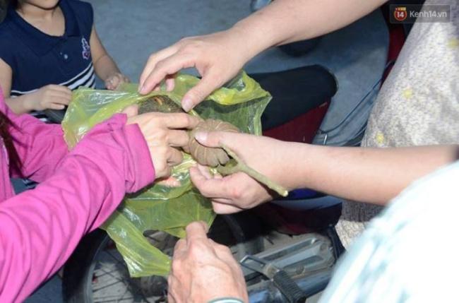 Nghệ An: Tưởng quả ngô đồng là quả óc chó, 50 học sinh bị ngộ độc - Ảnh 2.