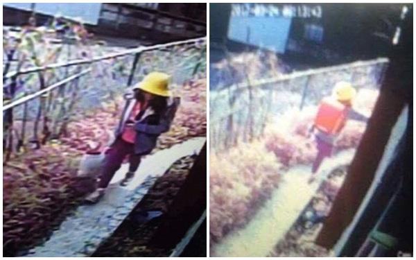 - begai7 1492130966487 - NÓNG: Đã bắt được nghi phạm bắt cóc, sát hại bé gái người Việt tại Nhật