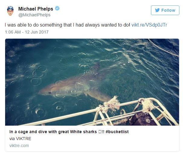 Kình ngư Michael Phelps bơi thi với cá mập trắng - Ảnh 1.