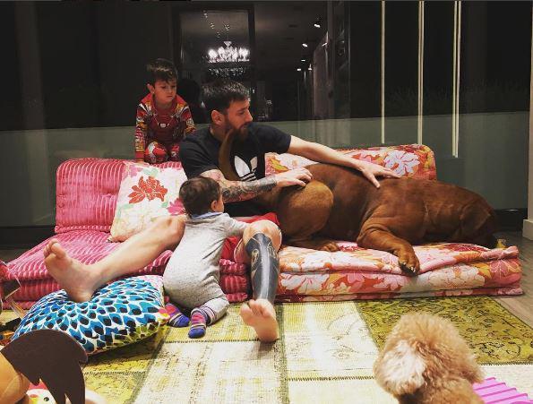 Sau 11 tháng, chó cưng nhà Messi lớn nhanh đến khó tin - Ảnh 1.
