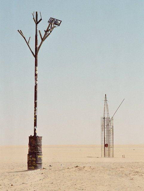 Chuyện chiếc cây cô độc nhất hành tinh và thông điệp ẩn giấu đằng sau đó - Ảnh 5.