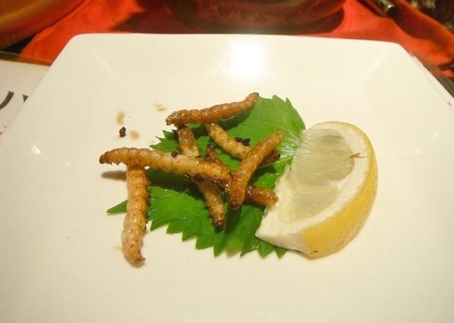 Nhà hàng kinh dị nổi tiếng với món thạch sùng tẩm bột, bọ rán hay caramel sâu - Ảnh 7.