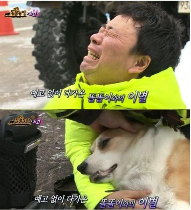 2 tháng sau ngày chú chó cưng qua đời, phép màu đã đến với cặp vợ chồng nghệ sĩ Hàn - Ảnh 3.