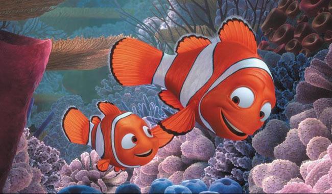 Sự thật về Finding Nemo: Cá bố Marlin sẽ chuyển giới ngay sau khi cá mẹ qua đời - Ảnh 2.