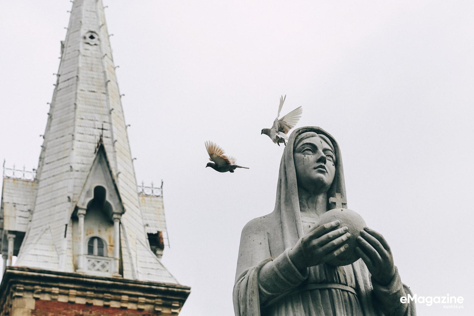 Những người Sài Gòn khùng nuôi chim trời thú hoang - Ảnh 17.