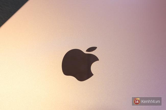 Trên tay iPad Pro 10,5-inch tại Việt Nam: Tất cả đều tuyệt nhưng đỉnh nhất là màn hình - Ảnh 10.