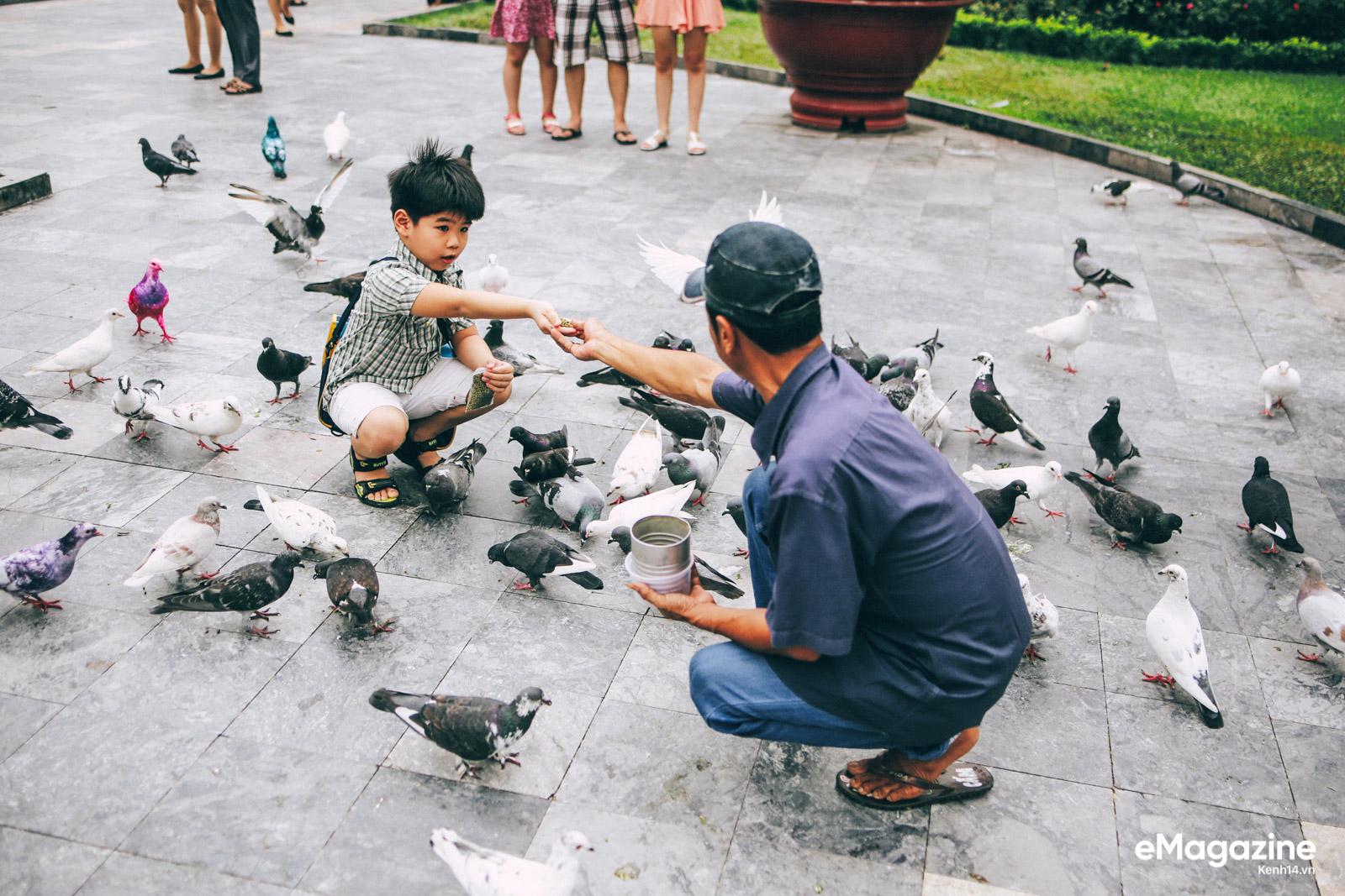Những người Sài Gòn khùng nuôi chim trời thú hoang - Ảnh 16.