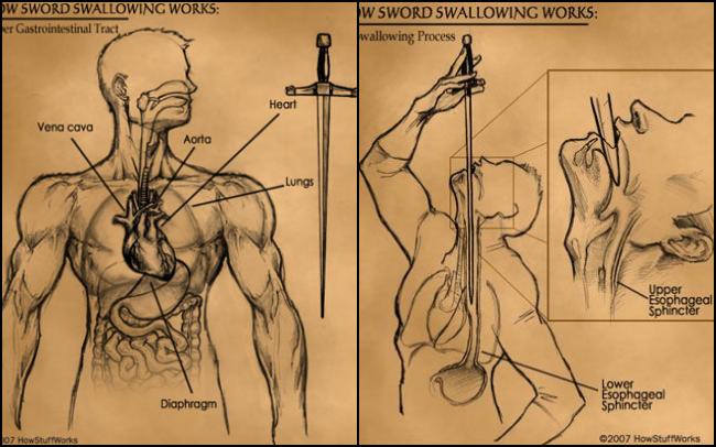 Lật tẩy bí ẩn đằng sau màn biểu diễn ảo thuật nuốt kiếm khiến ai xem cũng phải thót tim - ảnh 2