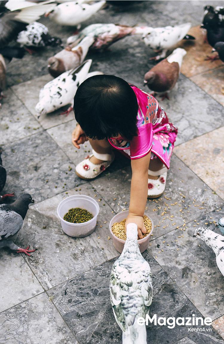 Những người Sài Gòn khùng nuôi chim trời thú hoang - Ảnh 22.
