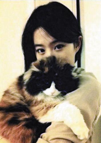 'Team cuồng mèo' hẳn sẽ yêu mến Lưu Diệc Phi hơn khi biết điều này!