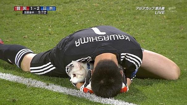 Cười không nhặt được miệng với bộ ảnh mèo xuất hiện trên sân bóng đá - Ảnh 7.