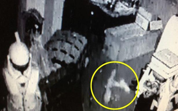 Mở camera xem, chủ cửa hàng đồ cổ thấy ngựa gỗ tự đung đưa rồi rơi khỏi kệ một cách bí ẩn - Ảnh 3.
