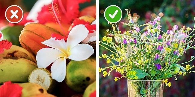 10 mẹo giữ hoa tươi lâu bạn chỉ ước mình biết sớm hơn - Ảnh 15.