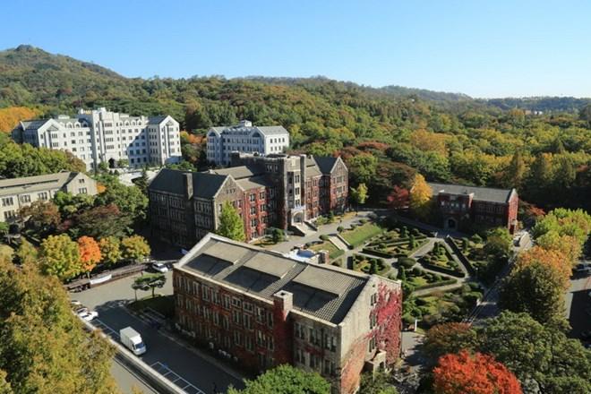 Hàn Quốc: Nổ bưu kiện tại trường đại học làm 1 người bị thương - Ảnh 1