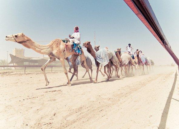 13 sự thật ít ai ngờ về Qatar - quốc gia giàu nhất thế giới 12