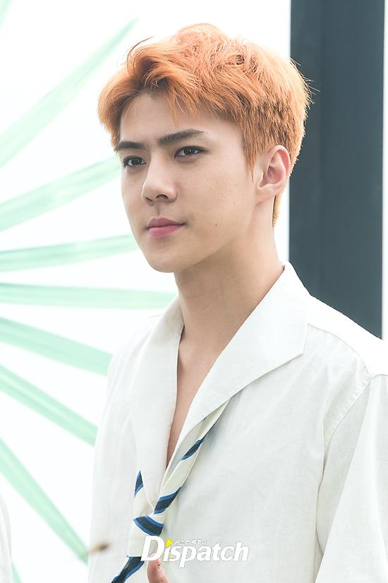 EXO trở lại: Có đẹp tựa hoàng tử giống fan xuýt xoa hay vừa sến vừa xuống sắc? - Ảnh 15.