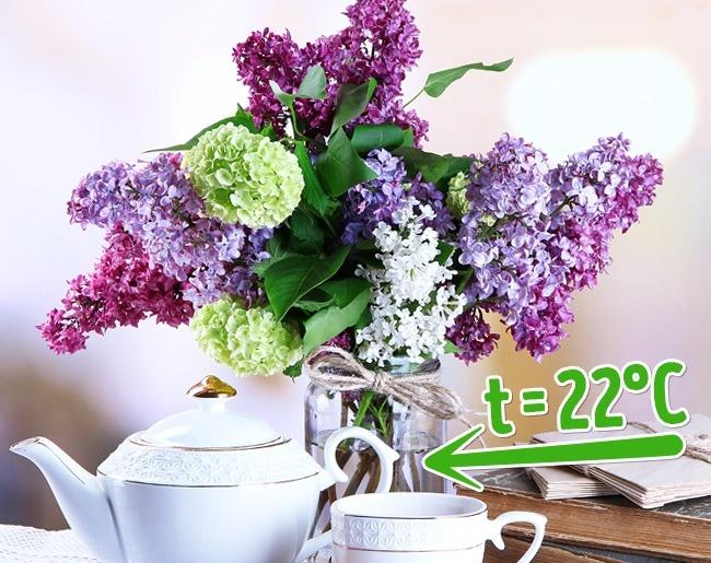 10 mẹo giữ hoa tươi lâu bạn chỉ ước mình biết sớm hơn - Ảnh 5.