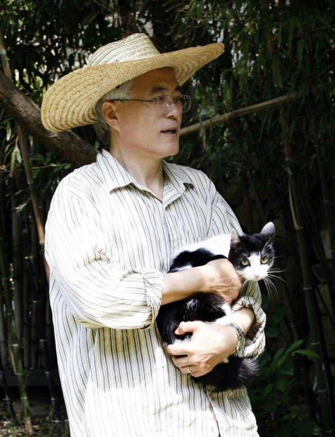 Tổng thống Moon Jae In tiết lộ về Đệ nhất Mèo Hàn Quốc - Ảnh 3.