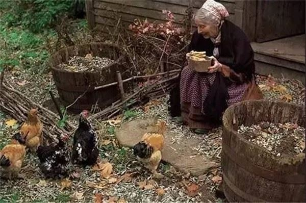 Đời sống: Ngôi nhà cổ tích có thật của bà cụ 92 tuổi khiến ai ai cũng phải trầm trồ, ước mơ