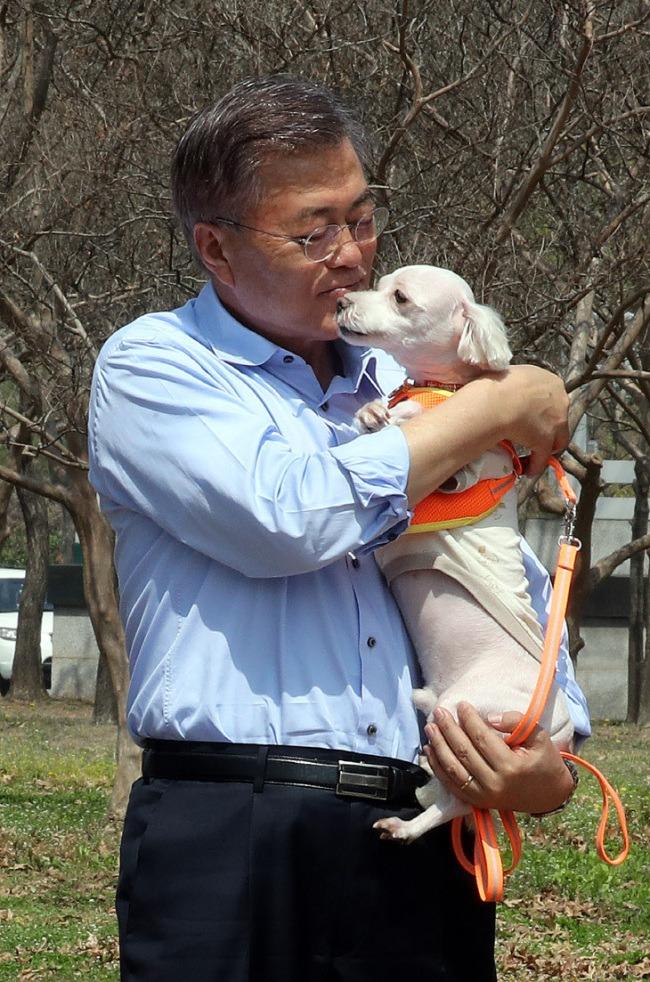 Tổng thống Moon Jae In tiết lộ về Đệ nhất Mèo Hàn Quốc - Ảnh 5.