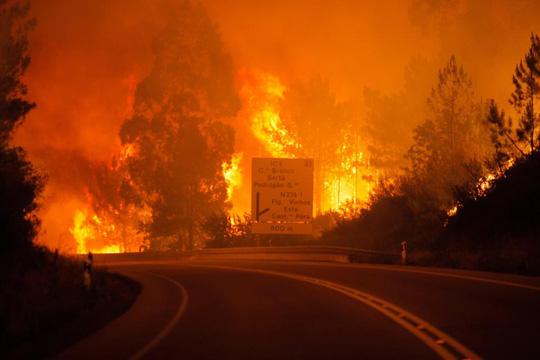 Đường cao tốc dẫn đến địa ngục ở Bồ Đào Nha - Ảnh 5.