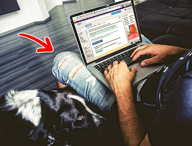 12 việc bạn thường làm khiến laptop bị tàn phá một cách nhanh chóng - Ảnh 6.