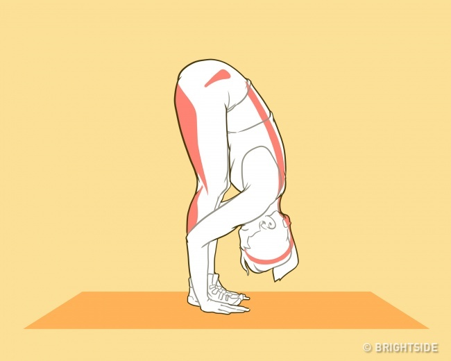 Những bài tập chiều cao giúp bạn cao lên nhanh chóng trong tuổi dậy thì - ảnh 4