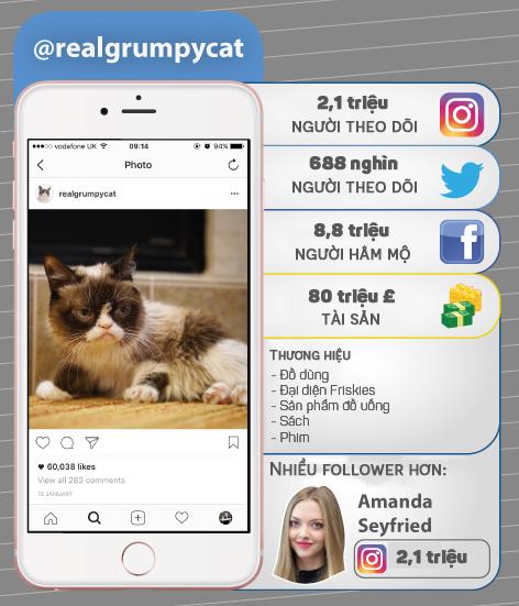 7 thú cưng cute lạc lối nổi đình đám trên Instagram nhất định bạn nên ghé thăm - Ảnh 4.