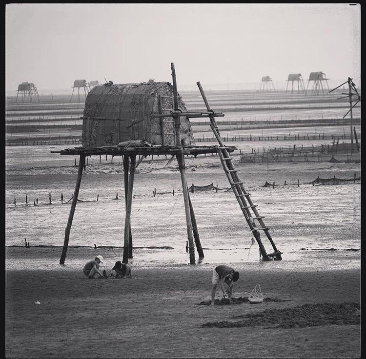 Du lịch: 5 bãi biển ngay gần Hà Nội để 99er bồi bổ