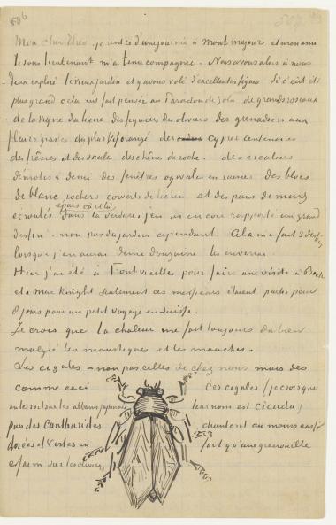 Loving Vincent - Những lá thư đầy xúc động về đam mê, cuộc sống và cái chết - Ảnh 7.