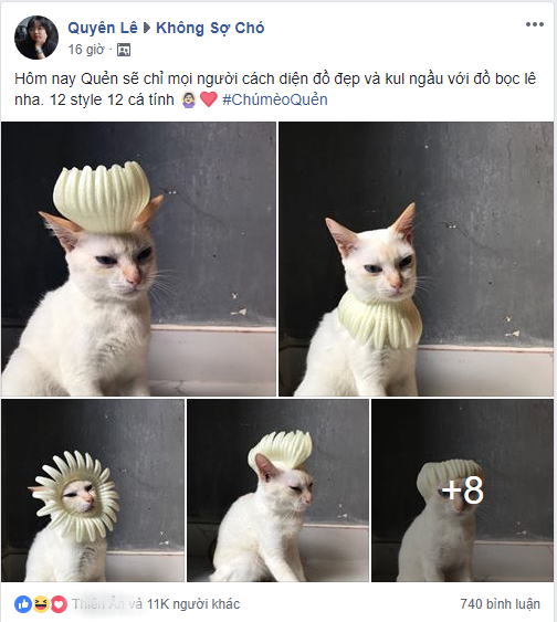 Xuất hiện boss mèo có biệt tài diễn xuất, hóa thân thành 12 nhân vật chỉ với miếng xốp bọc lê - Ảnh 1.