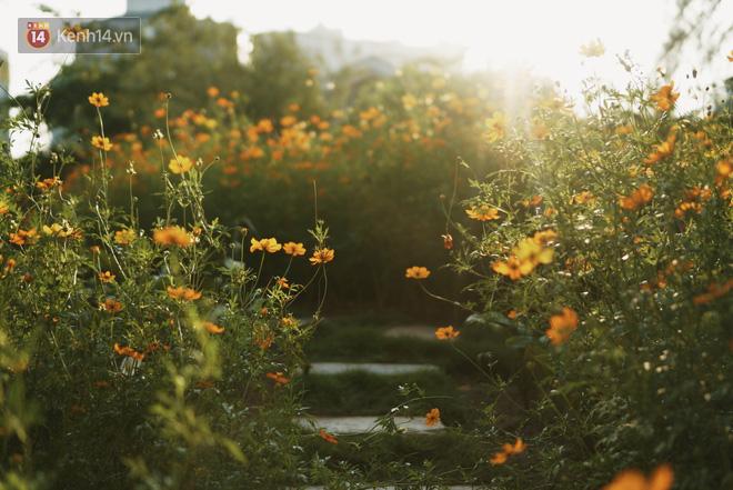 Ngôi trường lâu đời nhất Hà Nội - 110 năm qua vẫn vẹn nguyên vẻ đẹp yên bình, rêu phong và thách thức thời gian - Ảnh 20.
