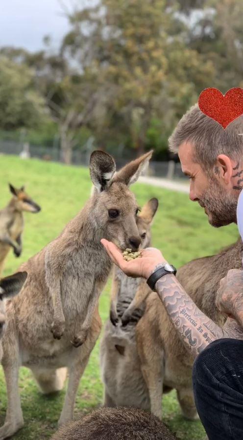 Giữa tin đồn lục đục, vợ chồng Beckham khoe ảnh gia đình đi chơi vui vẻ nhưng lại tránh chụp ảnh cùng nhau - Ảnh 4.