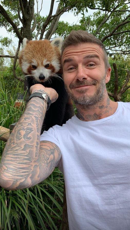 Giữa tin đồn lục đục, vợ chồng Beckham khoe ảnh gia đình đi chơi vui vẻ nhưng lại tránh chụp ảnh cùng nhau - Ảnh 6.