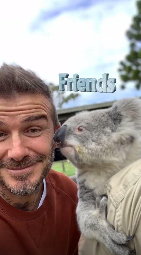 Giữa tin đồn lục đục, vợ chồng Beckham khoe ảnh gia đình đi chơi vui vẻ nhưng lại tránh chụp ảnh cùng nhau - Ảnh 3.