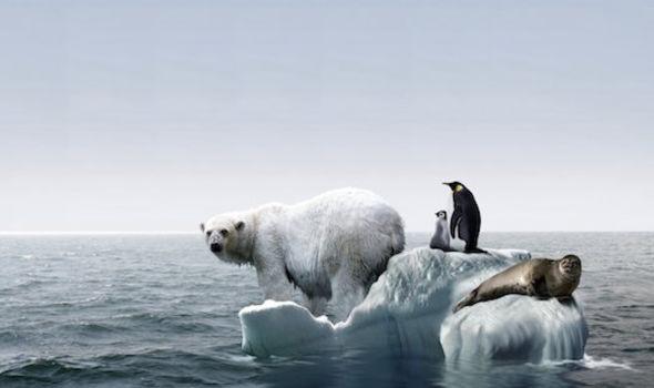 Từ lời cảnh báo mới nhất của Liên Hợp Quốc: Hành động ngay, trước khi thảm họa khí hậu xảy ra - Ảnh 3.