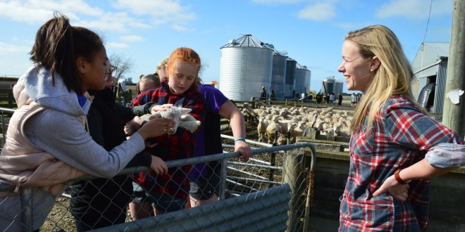 Đây chính là lý do khiến New Zealand trở thành quốc gia có nền giáo dục thân thiện với môi trường nhất thế giới - Ảnh 3.