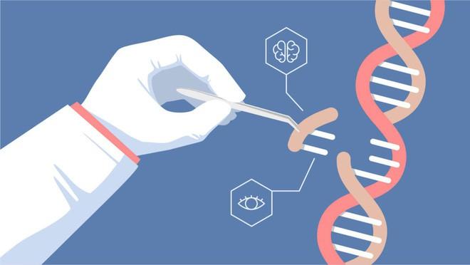 Một mình nhà khoa học Trung Quốc thì không thể chỉnh sửa gen người, phía sau ông ấy là sự hỗ trợ của 2 công ty Mỹ - ảnh 2