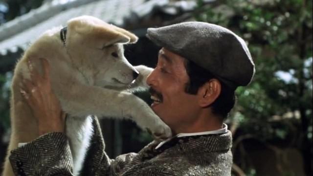 Năm Mậu Tuất và 5 câu chuyện cảm động về loài chó của điện ảnh Nhật Bản - ảnh 5