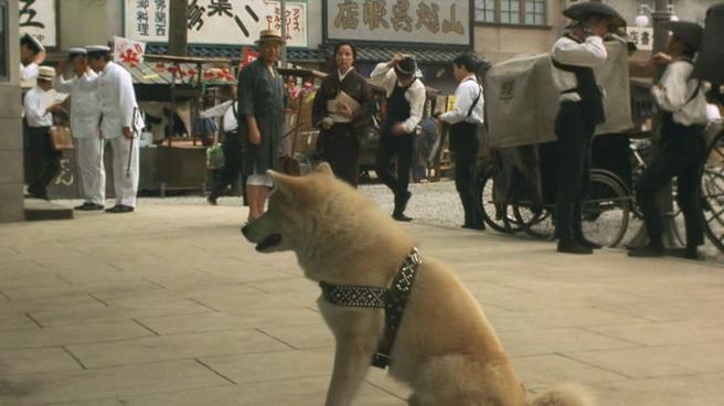 Năm Mậu Tuất và 5 câu chuyện cảm động về loài chó của điện ảnh Nhật Bản - ảnh 6