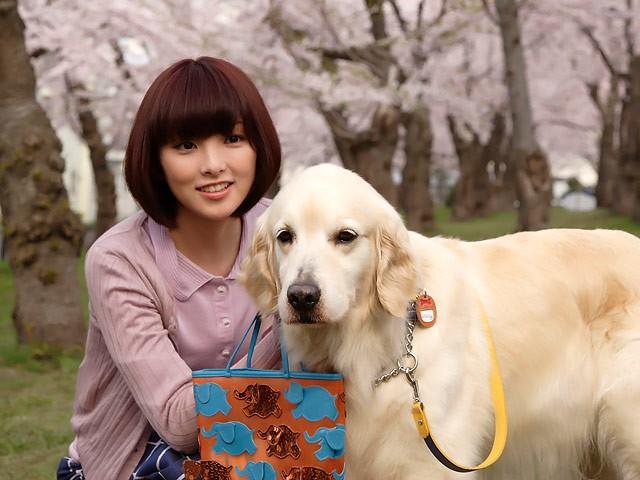 Năm Mậu Tuất và 5 câu chuyện cảm động về loài chó của điện ảnh Nhật Bản - ảnh 8