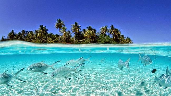 Nước biển ngày càng dâng, vậy mà hòn đảo này đang có phản ứng rất lạ khiến khoa học phải đau đầu - ảnh 2