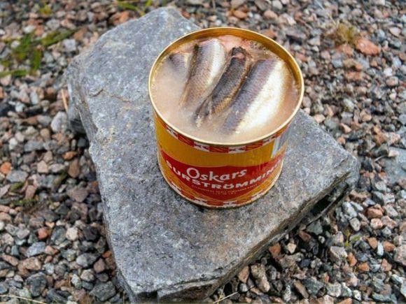 Nếm thức ăn cho chó, truy lùng mùi hôi và 5 công việc kỳ lạ chỉ có ở Nhật Bản - Ảnh 5.