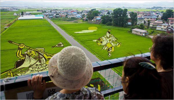 Làng thần kỳ Nhật Bản: Từ nghèo nhất đến nổi tiếng khắp cả nước, doanh số bán gạo tăng 400% nhờ biến ruộng lúa thành tranh - ảnh 1