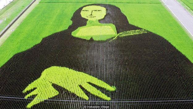 Làng thần kỳ Nhật Bản: Từ nghèo nhất đến nổi tiếng khắp cả nước, doanh số bán gạo tăng 400% nhờ biến ruộng lúa thành tranh - ảnh 3